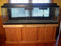 125 Gallon Black Trim All Glass Aquarium $600 OBO