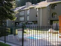 SPRING BREAK SKI VAIL CONDOMINIUM FOR RENTAL FEE.