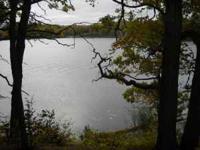 Beautiful wooded peninsula, three plus acres, 570 ft.