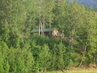 Your authentic Alaska trapper's cabin awaits you