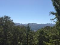 Located in sought-after central Portola Valley on over