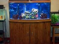 I have several fish tanks that for sale. 130g tank,