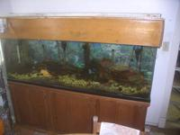 "135 gal glass fish tank, 6 foot long 251/2"" high, 18"""