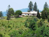 80 acres of Sierra views, fenced pastures, tree farm