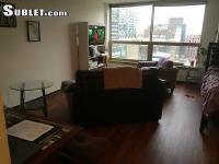 Big studio in Presidential Towers in West Loop! Pets