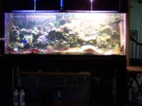 150 gal salt water reef tank- set up and running. comes