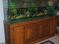 Very nice 150 Gallon fish tank, with wooden stand. This