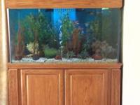 150 gallon fish tank. $900.00 or best offer. Custom