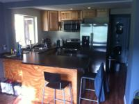 Newly remodeled and fully furnished 2 bedroom 1 bath