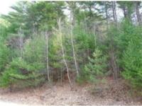 Build your dream home NOW! Nice 2.61 acre country lot