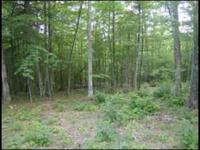 This 1.37 acre wooded lot with a creek on the back of