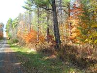 WOODED ACREAGE NEAR ITHACA FOR PRIVATE HOME SITE -----