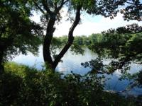 16 Beautiful riverfront Platted Subdivision lots within