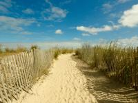 Own a piece of Dewey Beach, Oceanblock! This centrally