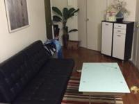 Sunny fully furnished apartment for student or intern