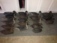 - 18 total decoys - 17 Inflatable duck decoys with one