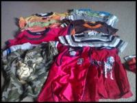 I have gently used 18 to 2t boyse t-shirts 2 tank tops