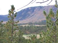 .24 acre parcel for sale in Palmer Lake, Colorado.