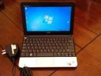 Intel Atom N450 Processor for portability (1.66 GHz,