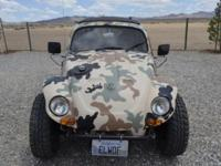 No rust. No dents. Camo paint on full Baja kit with