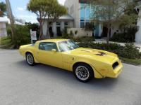 1977 Pontiac Firebird Trans Am 400 CI. The Color is