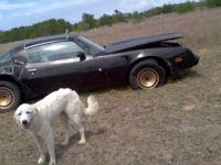 78 transam firebird everything is original , engine &