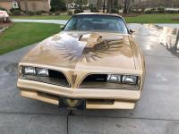 1978 Pontiac Trans AM Y88 Special Edition ordering only