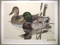 1981 Texas Duck Stamp Print, 1st of State by Larry