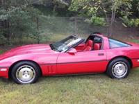 -LRB-904-RRB-513-1982 ext. 1345. Lariat trim. Leather