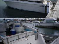 Type of Boat: Power Boat Year: 1990 Make: Wellcraft