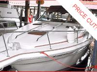 A great looking family sport boat with crisp designing