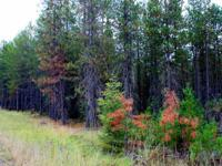 This Loon Lake location treed 4.9 acre parcel provides