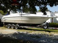 1999 Chaparral 290 Signiture - 29 ft of heaven, a