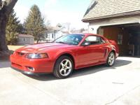 1999 Ford Mustang Cobra, won't find one in nicer shape,