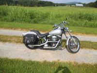 1999 Harley Davidson softail custom,great shape, ready