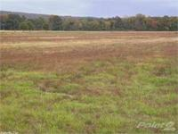 Recently reduced acre close to the little red river in