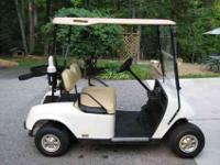 2007 EZGO precision drive golf cart. You can put