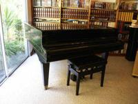"Grand Piano 6'6"". Early 1900 Black Kimball Restored in"