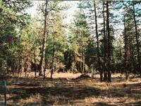 2.52 Acres Gross (2.13 Acres Net) M/L being: Lot 44,