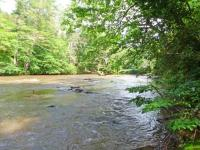 Toccoa River Front in THE HEART of ASKA Area! NEW