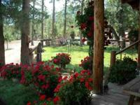 5 Mountain Acres with Log Home and Equestrian Setup.