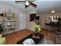 Large Walk-in Closets, Fullsize Washer/Dryer In Every