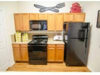 One, Two Three Bedroom Apartments, Washer and Dryer in