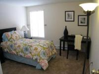 Studio, 1, 2 and 3 Bedroom Apartment Homes, Minutes to