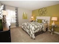 Newly Renovated Units 1, 2 3 Bedroom Apartments,