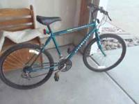 I have a womans Roadmaster 15 speed bicycle in great