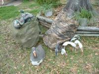FOR SALE: 2 big bags of duck hunting decoys, near