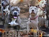 2 females left available Edge meets Moneyline Born