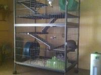 What I have here is my 2 grey chinchillas that will be