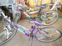 I have 2 mountain bikes that have been garage stored